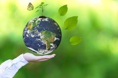 Sostener un globo de la tierra que brilla intensamente en sus manos con la mariposa fotos de archivo libres de regalías