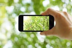 Sostener un teléfono elegante Imagenes de archivo
