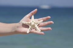 Sostener una estrella de mar Imágenes de archivo libres de regalías