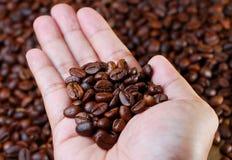 Sostenga los granos de café Fotos de archivo libres de regalías