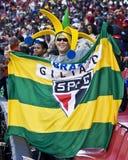 Sostenitore brasiliano di calcio - WC 2010 della FIFA fotografia stock libera da diritti