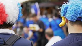 Sostenitori in cappelli divertenti con le mascotte che si riuniscono per sostenere squadra di calcio nazionale stock footage
