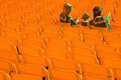 Sostenitori sudafricani di rugby Immagini Stock Libere da Diritti