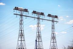 Sostiene le linee elettriche ad alta tensione Fotografia Stock Libera da Diritti
