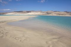 Canary Islands, Spain Sotavento Beach in Fuerteventura,. Sotavento Beach in Fuerteventura Canary Islands, Spain stock photography
