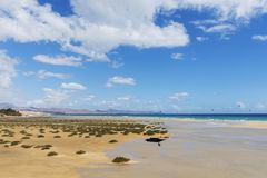 Sotavento Beach in Fuerteventura, Spain. A panoramic view of the Sotavento Beach in Fuerteventura, Canary Islands, Spain, frequented by kitesurfers royalty free stock images