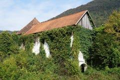 Soteska kasztel, Slovenia Fotografia Stock