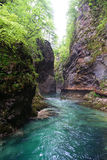Soteska Vintgar or Bled Gorge Blejski vintgar. Is a waterfall in national park in Slovenia Stock Photos