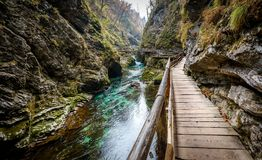 Soteska Vintgar, The Vintgar Gorge or Bled Gorge in Slovenia. Famous canyon with river Radovna, waterfalls and wooden bridges pathway. Touristic landmark of Royalty Free Stock Photo