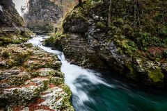 Soteska Vintgar, The Vintgar Gorge or Bled Gorge in Slovenia. Famous canyon with river Radovna, waterfalls and wooden bridges pathway. Touristic landmark of Stock Images