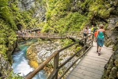 Soteska vintgar gorge boardwalk. Soteska vintgar gorge with tourists walking on boardwalk along river Royalty Free Stock Photos
