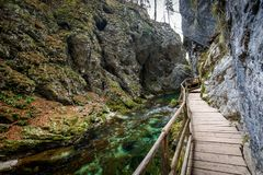 Soteska Vintgar, The Vintgar Gorge or Bled Gorge in Slovenia. Famous canyon with river Radovna, waterfalls and wooden bridges pathway. Touristic landmark of Royalty Free Stock Image