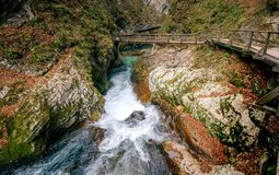 Soteska Vintgar, The Vintgar Gorge or Bled Gorge in Slovenia. Famous canyon with river Radovna, waterfalls and wooden bridges pathway. Touristic landmark of Royalty Free Stock Images