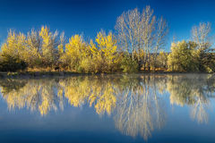 Sothöna sjö Autumn Reflections Royaltyfri Foto