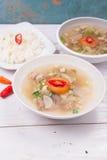 Soto o el coto o la sopa indonesia de la carne de vaca sirvieron con el arroz blanco, el tomate, la soja, y la cebolla verde Foto de archivo libre de regalías