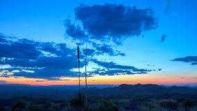 Sotols in Sunset, Big Bend National Park. Sotol plants at sunset. Picture taken at Sotol Vista overlook, Big Bend National Park stock photo