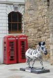 Soton-zebra in City. City soton zebra red&white stock images