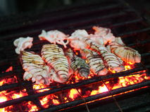 Sotong bakar. Griiled cuttlefish squid on barbecue royalty free stock photos