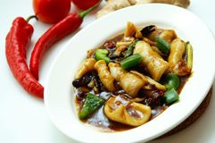 Sotong Masak Kicap. Tasty squid cooked with soy sauce is another famous Malay dish Stock Image