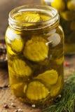 Sottaceti organici casalinghi di verde di scricchiolio Fotografia Stock