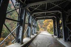Sotto il ponte metallico in autunno Fotografia Stock Libera da Diritti