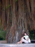 Sotto l'albero Immagine Stock Libera da Diritti