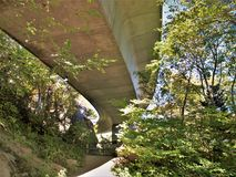Sotto Linn Cove Viaduct immagini stock libere da diritti