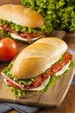 Sotto panino italiano casalingo immagini stock libere da diritti