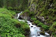 Sottoguda Canyon Italy Stock Photo