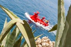 Sottomarino turistico rosso luminoso attraverso l'aloe selvatico vera Fotografie Stock
