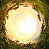 sottragga il fondo turbinato dei fiori magici di favola alla luce del tramonto fotografia stock