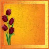 Sottragga la priorità bassa del grunge con i tulipani Immagini Stock
