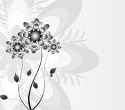 Sottragga la priorità bassa della natura, fiori della natura Fotografie Stock