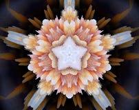 Sottragga la stella parteggiata espelsa dell'illustrazione 5 della mandala 3D illustrazione vettoriale