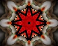 Sottragga la stella parteggiata espelsa dell'illustrazione 8 della mandala 3D Fotografia Stock