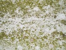 Sottragga la vernice raschiata Fotografia Stock Libera da Diritti