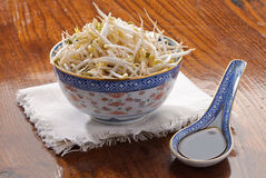 Sou sprout and  soy sauce. Soy sprout with soy sauce in the spoon Royalty Free Stock Photo