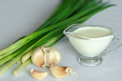 Souce And Onion And Garlic Stock Images