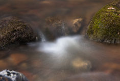 Souce stream. Natural fresh and purity stream stock images