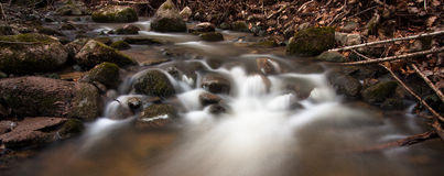 Souce stream. Natural fresh and purity stream royalty free stock images