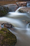 Souce stream. Natural fresh and purity stream Stock Photography