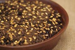 Soucoupe avec des graines pour la décoration de Pâques Image libre de droits
