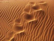 Soufflé avec le sable Photos libres de droits