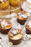Soufflé doux de fromage blanc avec des raisins secs pour le dessert Photos stock