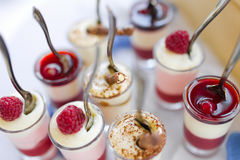 Souffle with berries. Pudding with berries and chocolate Stock Images