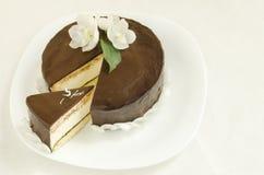 Souffle Cake with chocolate glaze Stock Photography