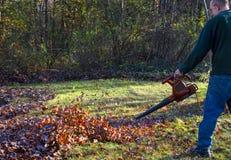 Soufflement de feuille d'automne Photographie stock