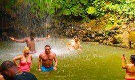 Soufriere St Lucia - Maj 12, 2016: En vattenfall på botaniska trädgårdarna i St Lucia Fotografering för Bildbyråer
