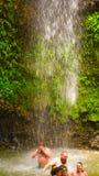 Soufriere St Lucia - Maj 12, 2016: En vattenfall på botaniska trädgårdarna i St Lucia Arkivbilder