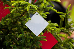 Souhait de l'arbre photos stock